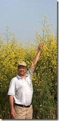 tall_mustard